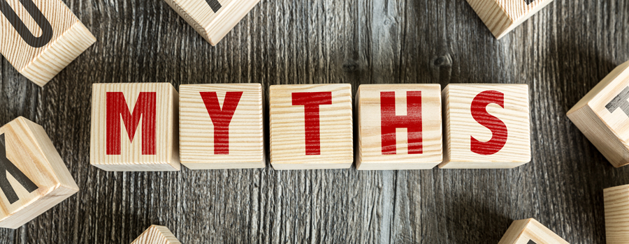Search Engine Optimization Myths